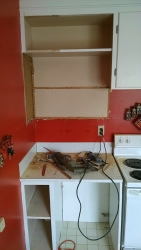 This shows the old countertop about to be removed.