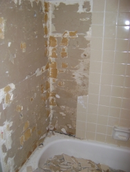 The old shower being demo\'d.